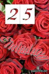 25. Geburtstag Einladungskarte