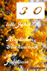 30. Geburtstag - kostenlose Karte