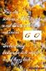 60 Geburtstag: kostenlose Danksagungskarten