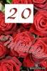Einladung zum 20zigsten Geburtstag