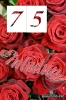 75 Geburtstag: Geburtstagseinladung