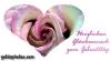 grusskarten-geburtstag-rose-pink