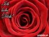 karte-rose-ich-liebe-dich