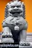 karten-geburtstag-drache